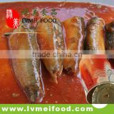 Factory Price Canned Sardines in Tomato Source