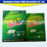 Pest Control Glue Mouse Traps,Glue Trap Mice In Hot Sale