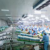 Vegetable Processing Cold Storage