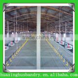 broiler meat chicken birds poultry flooring or ground feeding drinking system and feeding pan