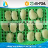 Newly arrived excellent quality fresh frozen live comb pen shell