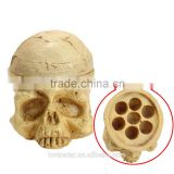 LT044 Unique Style Cheap China Porous Skull Individuality Tattoo removal laser Pigment Ink Beige tattoo ink Resin Plate