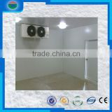 New Arrival hot sale bakery cold room/cold storage