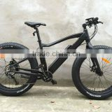 2015 Power ebike/26Inch electric bike Al alloy 1000W brushless motor Fat electric bike for sale ( HJ-M21 )