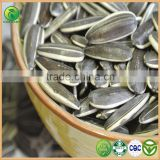 Salting Roasting Sunflower Seeds, Sun Flower Seeds Sunflower, Confectionary Sunflower Seeds