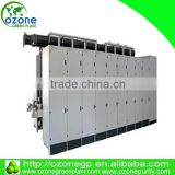 2016 Hot selling Corona beer discharge ozone generator for wastewater treatment