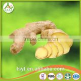2017bulk Chinese organic fresh ginger with Eu organic certificate