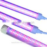Hydroponics Grow Lights / t5 fluorescent grow light fixture / t5 led grow tube fixtures