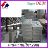 Raw materials for paper cups,pe coated paper in roll/in sheet,paper cup fan