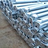 Maitland Steel Ball Joints handrail Lismore ball tube fence
