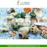 500g Beach Mixed Medium Shells Assorted Sea Shells Seashells Home Decoration