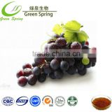 Wholesale Grape seed extract opc 95%,grape seed extract 95% proanthocyanidine