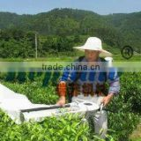 hot sell four stroke gasoline engine farm use shoulder hanging type tea leaf picking machine