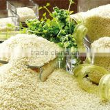 5KG,25KG,50KG short grain rice brands / white round grain rice bulks