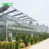 Greenhouse system engineering company design Glass Agricultural greenhouse project Film engineering steel pipe