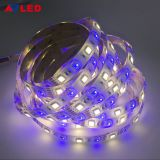 Wholesale good price high quality 60led/m 12v 24v smd 5050  IP67 flexible led strip