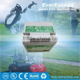 Hot sell Gelled Valve Regulated Lead acid battery operated golf carts