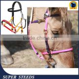 halter and bridles with crystals