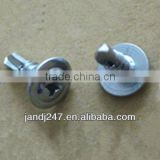 Truss head self drilling screw with factory price