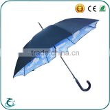 Manufacturer Umbrella Blue Sky Printed Inside Open Straight Umbrella