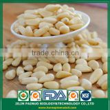 Wholesale High Quality Siberian Pine Nut Kernels