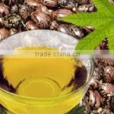 BEST QUALITY CASTOR OIL