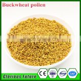 2016 Newest Beauty Food Nutrition Bee Pollen For Bees