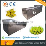 Leader fruit pitting machine with CE&ISO