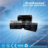 EverExceed 6V 4AH rechargeable GEL sealed lead acid battery