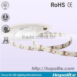 CE APPROVED CRI 90 flexible DC12V/DC24V 10MM 18-20LM/LED smd5050 led strip