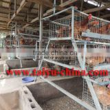 TAIYU cages for day old chick