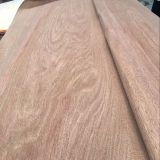 Gurjan  veneer for  india  market   from  LINYI China