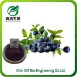 Organic Blueberry Powder, Instant Dried Health Food Blueberry Powder,Wholesale Wild Blueberry Powder