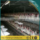Guangzhou Broiler Poultry Farm House Design Chicken Cage/ Egg Layer Cages