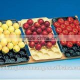 China Supply FDA/SGS Food Grade Custom Made Thermoformed Gillian's PP Plastic Fruit Tray