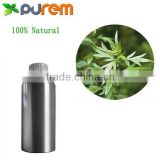 100% Natural Artemisia argyi essential oil