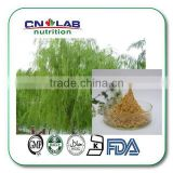 Pure white willow bark extract,high quality white willow bark extract powder,best price white willow bark power