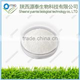 Supply high purity Noopept powder/CAS:157115-85-0