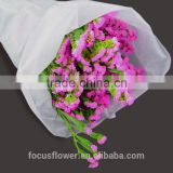 factory price supply 60cm fresh cut real touch statice Preserved Fresh Flower for birthday