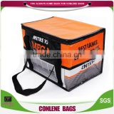 Hight Quality Products Bulk Cooler Bags Wholesale Insulated Non Woven Picnic Cooler Bag For Frozen Food China Made