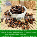 Chinese black watermelon seeds for sale
