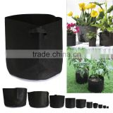 Provides Great Support Black Felt Strawberry Grow Bags