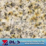 Yellow Rusty Granite 682