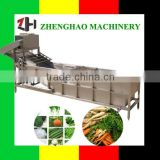 high quality fruit and vegetable bubble washing machines/vegetable bubble cleaning machine/bubble cleaning machine
