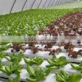 PVC Frame Material nft hydroponics channel