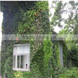 China wholesale artificial plant wall manufacturer foliage plants wall green wall fake plants insulation