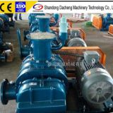DSR50V Roots Vacuum pump for  Biogas Suction and Discharge