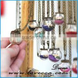 Handmade Miniature Globe Necklace Terrarium glass cover Necklace gc6501