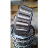 SL Cylindrical Roller Bearings