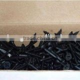 Dry Wall Screws